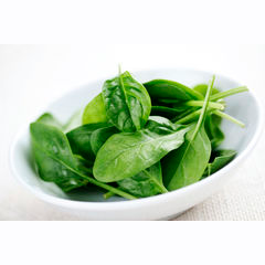 Baby spinach supplier
